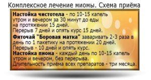 Лечение миомы народными средствами рецепты которые помогли