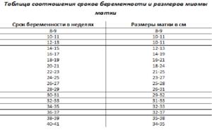 Размеры миомы матки в мм и в неделях таблица