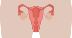 Менструация при климаксе