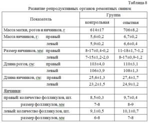 Размер яичников у женщин