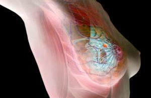 Заболевания молочной железы симптомы причины лечение диагностика