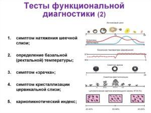 Тесты функциональной диагностики яичников