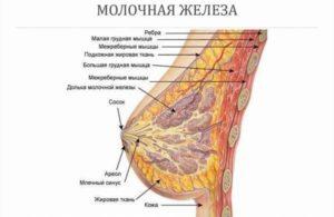 Увеличение молочной железы у женщин