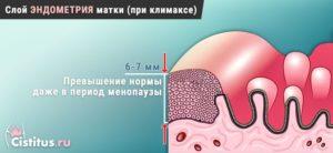 Эндометрий при климаксе