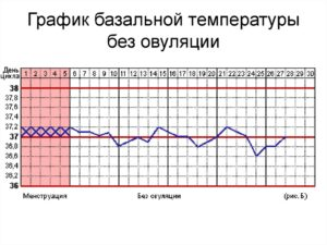 Базальная температура при климаксе