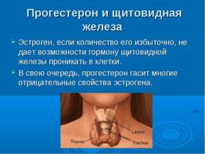 Климакс и щитовидка