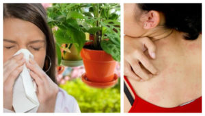 Аллергия при климаксе