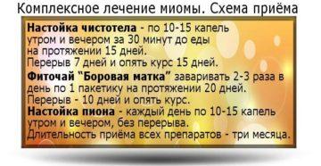 Лечение миомы народными средствами рецепты